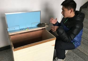 武汉高中生发明捕鼠神器获世界金奖